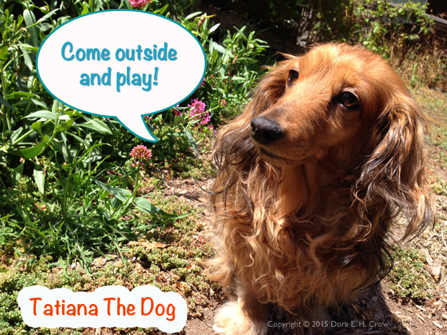 Tatiana The Dog, a long-haired dachshund, with flowers in the background